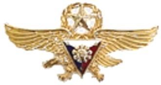 John Dale Ryan - Image: PAF Gold Wings Badge