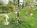 Pacifier Tree - Østre Anlæg - Copenhagen - DSC07336.JPG