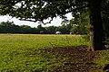 Paddock near Little Heath Road - geograph.org.uk - 883371.jpg