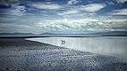 Paesaggio marino a Mindanao, Filippine, con bassa marea.jpg
