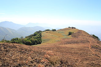 Paithalmala - Paithalmala Hilltop: The observatory tower is seen at the extreme