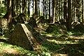 Panzersperre im Aachener Wald - geo.hlipp.de - 10425.jpg