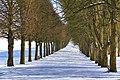 Parc de Sceaux 2013 008.jpg