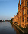 Parliament on the Thames (14564113967).jpg