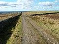 Path and fell gate - geograph.org.uk - 1198115.jpg
