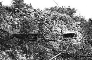 Battle of Peleliu - Japanese fortifications