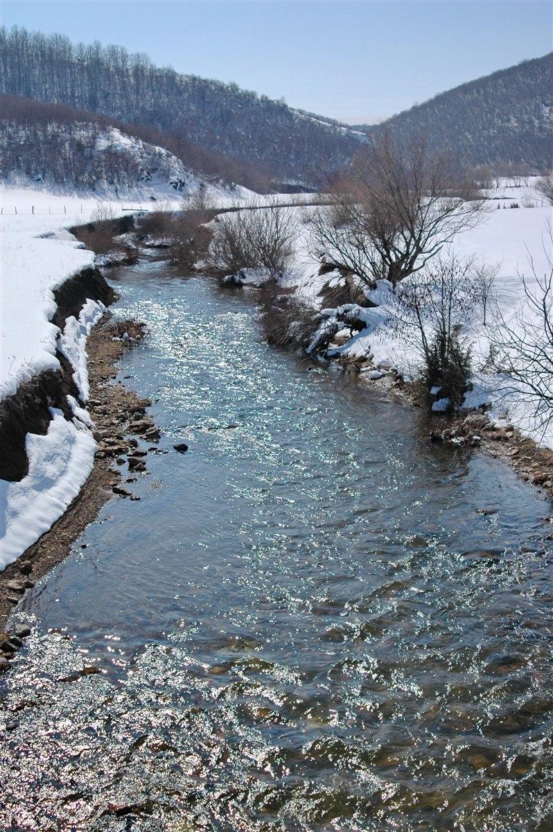 Pester plateau in Serbia - 0855
