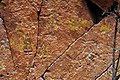 Petroglyphs at Tsankawi (5988536813).jpg