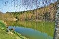 Petrovický rybník, Petrovice, okres Blansko (02).jpg
