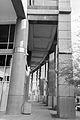 Phoenix City Hall-2.jpg