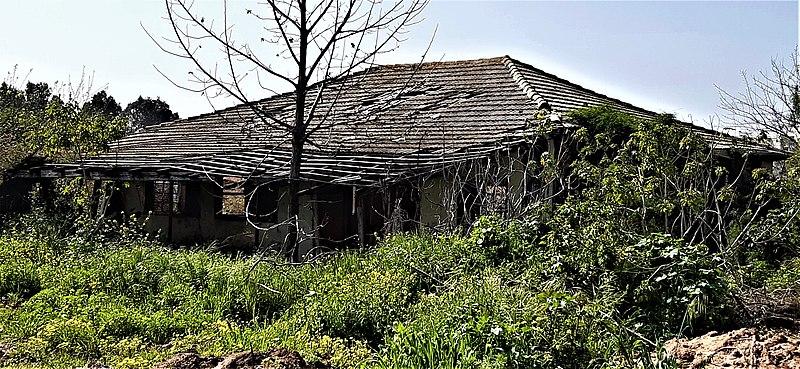 בית אריזה לתפוזים כפר הדר
