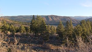 Pine River Valley Spring near Bayfield Colorado.JPG