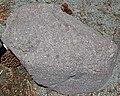 Pinkish-reddish porphyritic dacite (Upper Pleistocene, 27 ka; Devastated Area, Lassen Volcano National Park, California, USA) 2.jpg
