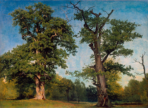 Pioneers of the Woods, California by Albert Bierstadt, c. 1861, High Museum of Art