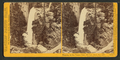 Piwyac, or the Vernal Fall, 300 feet from the cliff, Yosemite Valley, Mariposa County, Cal, by Watkins, Carleton E., 1829-1916 4.png