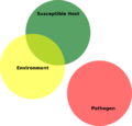 Plant Disease Triangle No Pathogen.png