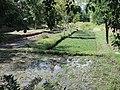 Plantación de Berro - panoramio.jpg