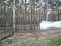 Pludi druvciema 2011 - panoramio (46).jpg