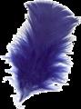 Pluma-azul-1L.png