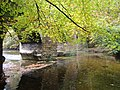 Plymbridge bridge from river bank - panoramio.jpg