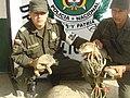 Policía Ambiental y Ecológica (5513888572).jpg
