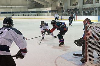 World Police and Fire Games - Ice Hockey at the 2015 games in Fairfax, Virginia