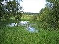 Pond at Burrowine Farm - geograph.org.uk - 23317.jpg