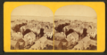 Portland Harbor, from Observatory (2), from Robert N. Dennis collection of stereoscopic views.png