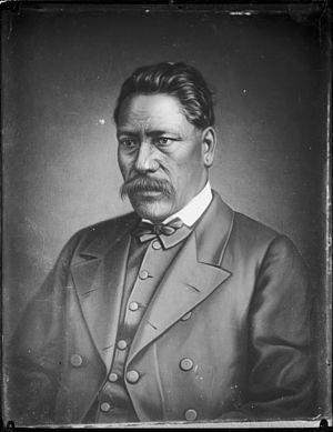 Tareha Te Moananui - Image: Portrait of Tareha Te Moananui