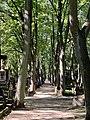 Powązki Cemetery, Warsaw, Poland, 09.jpg