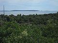 Premuda island.jpg