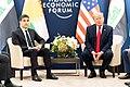 President Trump at Davos (49424592228).jpg
