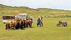 Przygotowania do lokalnego festiwalu Naadam (07).jpg