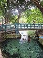 Puente en el Palmar, Q. Roo - panoramio.jpg
