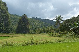 Puerto Princesa Subterranean Park, limestone formations, Palawan, Philippines.jpg