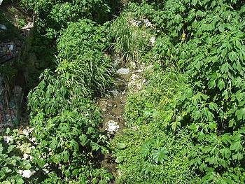 QuebradaTacagua2004-8-19