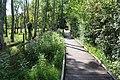 Réserve naturelle Marais Lavours Aignoz Ceyzérieu 17.jpg