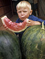 RIAN archive 569736 Boy eating a watermelon.jpg