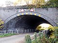 Rail bridge on Wagg Drove, Huish Episcopi, Somerset 02.jpg