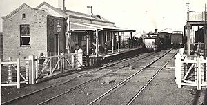 Maitland railway station - Station in 1877