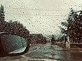 Rainy day in Batna.jpg