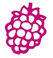 Raspberry Sorbetta.jpg