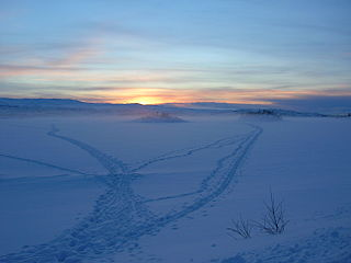 Raudvatnet lake in Rana, Nordland, Norway