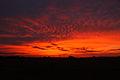 Red sky (12083505834).jpg
