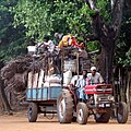 Red tractor, huge load. Jan 2009 displacement in the Vanni.jpg