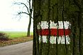 Red way, Rogalin.JPG