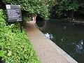 Regent's Canal 6982.jpg
