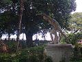 Releitura de estátua entre as árvores centenárias.jpg