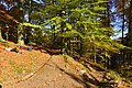 Repos au soleil d'automne (22937486861).jpg