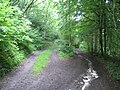 Restricted byway, Stony Hill near Chicklade 3 - geograph.org.uk - 469129.jpg